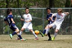 2015年度 第39回 全日本少年サッカー大会 大阪府大会 豊能地区予選 DREAM FC と ガンバ大阪ジュニアが中央大会 進出!