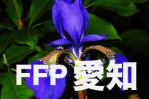 2016年度 JFAフットボールフューチャープログラム(FFP)愛知県代表選手決定!