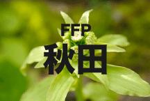 2016年度 JFAフットボールフューチャープログラム(FFP)秋田県代表選手決定!