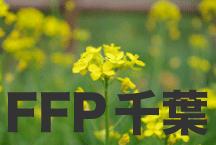 2016年度 JFAフットボールフューチャープログラム(FFP)千葉県代表選手決定!