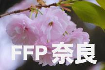 2016年度 JFAフットボールフューチャープログラム(FFP)奈良県代表選手決定!