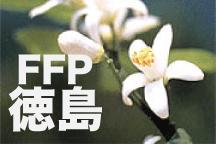 2016年度 JFAフットボールフューチャープログラム(FFP)徳島県代表選手決定!