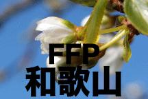 2016年度 JFAフットボールフューチャープログラム(FFP)和歌山県代表選手決定!