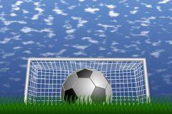 2016年度 第36回千葉県少年サッカー選手権5年生大会 中央大会 優勝は柏レイソルU-12!