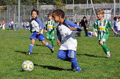 2016年度 第13回 ドコモ 東北少年少女フットサル大会 優勝は少年の部 ヴェルディサッカースクール岩手、少女の部 ナカスポ!