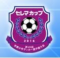 JA全農杯チビリンピック2017 小学生8人制サッカー大阪府大会 南河内地区予選 優勝は長野FC!