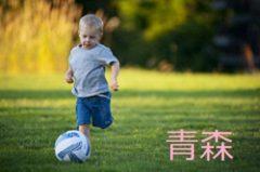 2017年度【青森県】第1回八戸サマーフェスティバル少年サッカー大会(U-12)組合せ掲載!8/26,27開催!