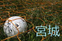 2017年度 宮城 ヒロスポーツカップ宮城野ブロック予選 優勝は なかのFC!
