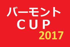 2017年度 バーモントカップ 第27回全日本少年フットサル 東京都大会一般予選 東京都決勝大会出場チーム決定!!