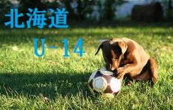 2017年度 第49回 滋賀県サッカースポーツ少年団選手権大会 優勝はアミティエ!