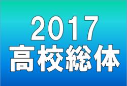 2017年度 第70回近畿高等学校サッカー選手権大会 優勝は大阪桐蔭!