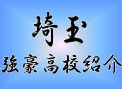 【強豪高校紹介】埼玉県 埼玉県立浦和西高校(2017年度高校総体・選手権埼玉県予選2位)