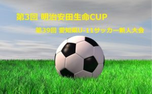 2017サイエイCUP第15回埼玉県クラブユースサッカー選手権U-12会長杯  優勝は1FC!