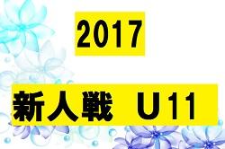 2017ニッサンカップ第30回九州ジュニア(U-11)サッカー宮崎県大会 優勝はアリーバFC!
