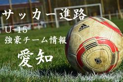 【U-15強豪チーム紹介】愛知県 ドルフィンFC(2017年度のクラブユース選手権 愛知県予選6位)