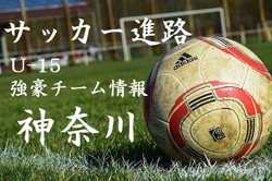 【U-15強豪チーム紹介】神奈川県 湘南ベルマーレJY(関東2部リーグ所属 2017年度クラブユース選手権県予選免除)