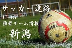 【U-15強豪チーム紹介】新潟県 アルビレックス新潟(2017年度クラブユース選手権 新潟県予選準優勝)