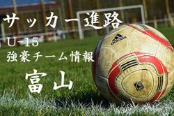 【U-15強豪チーム紹介】富山県 エヌスタイル(2017年度クラブユース選手権 富山県予選3位)