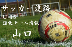 2018年度 和歌山県リーグ表一覧