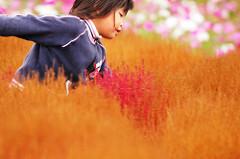 北海道・東北地区の今週末の大会・イベント情報【9月23日(土)、9月24日(日)】