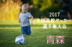 2017年度 第96回全国高校サッカー選手権青森県大会 優勝は青森山田!21年連続!