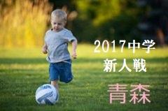 2017年度 岐阜市U-11サッカー大会、岐阜市U-11スポーツ少年団大会 優勝は茜部!
