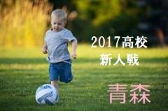 2017年度 青森県高等学校サッカー新人戦三八地区大会結果掲載!優勝は八戸高校!