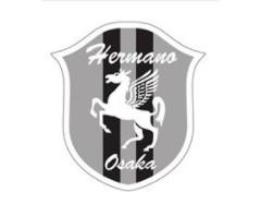 2018年度 SC大阪エルマーノサッカークラブ U-15体験練習会 9月~11月(火・水・金) 随時受付中!