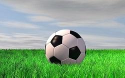 2017年度 第12回広島オータムサッカー大会 県大会 優勝はサンフレッチェ広島!