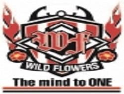 2018年度 WILD FLOWERS(広島県)ジュニアユース 体験会 (10/6ほか)実施のお知らせ