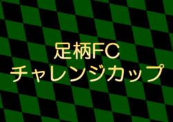 2018年度 第31回足柄FCチャレンジカップU-12大会 優勝はレジスタFC!