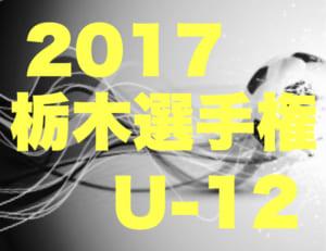 2017年度 第46回 栃木県少年サッカー選手大会  選手権の部U-12 3・4回戦結果速報!次は11/23!