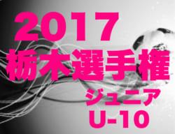 【日程・会場変更】2017年度 第46回 栃木県少年サッカー選手権大会  ジュニアの部U-10 結果速報10/21!!