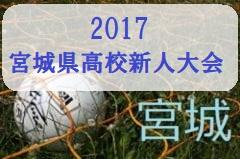 2017年度 宮城県高等学校サッカー新人大会結果掲載!優勝は仙台育英!