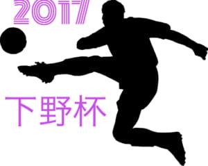 2017年度 第48回 下野杯争奪 県下中学生サッカー大会U-15  ラウンド16結果速報!準々決勝12/17