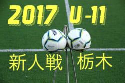 2017年度 JA全農杯チビリンピック関東予選栃木県大会 第35回栃木県少年サッカー新人大会 U-11 1/20~開催!