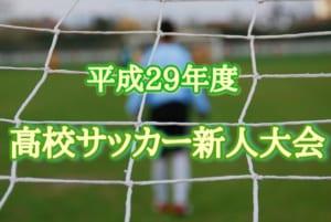 2017年度 愛媛県高校サッカー新人大会 【東予地区予選】12/17.23.24開催!