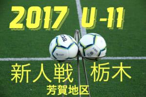 2017年度 第35回栃木県少年サッカー新人大会 芳賀地区予選大会 U-11 組み合わせ発表!12/16~開催!