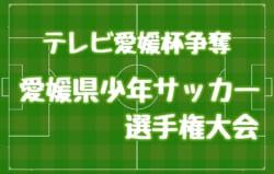2017年度 テレビ愛媛杯争奪第47回愛媛県少年サッカー選手権大会 優勝は帝人!