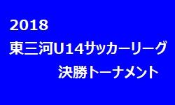 2018年 東三河3種 U-14サッカーリーグ 決勝トーナメント 優勝は音羽中学校
