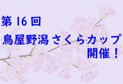 2018バーモントカップ第27回全日本少年フットサル大会福井県大会 4/14.30.5/6開催 要項掲載