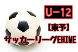 2018年度 JFA U-12サッカーリーグ EHIME東予リーグ 情報お待ちしています!