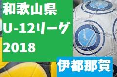 2018年度 JFA U-12サッカーリーグ2018和歌山(ホップリーグ)伊都那賀ブロック 5/27(日)結果速報!次節は6/10(日)!