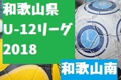 2018年度 JFA U-12サッカーリーグ2018和歌山(ホップリーグ)和歌山南ブロック 9/23結果速報!情報提供お待ちしています!