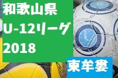 2018年度 JFA U-12サッカーリーグ2018和歌山(ホップリーグ)東牟婁ブロック 4/21,22結果速報!次節4/28,29!