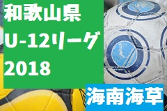/2018年度 JFA U-12サッカーリーグ2018和歌山(ホップリーグ)海南海草ブロック 7/16(月・祝)後期開幕!次節は8/19!