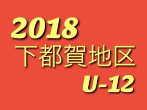 2018 U-12地域リーグ IN下都賀 4/22暫定結果!次は4/29!!