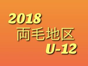 2018年度 両毛地区 U-12リーグ 4/22暫定結果!次は4/28!