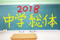 2018年度第50回広島県中学校サッカー選手権大会結果速報!準決勝・決勝7/21