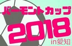 2018年度 JFAバーモントカップ 第28回全日本U-12フットサル選手権【愛知県大会】5/27結果速報!情報お待ちしています!